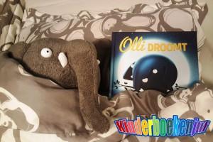 Olli droomt